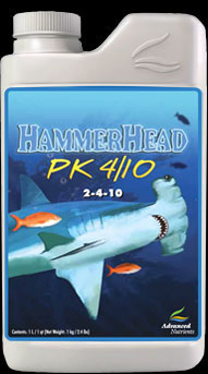 Hammerhead *OUT OF STOCK*