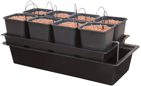 Wilma 8 Pot Complete System