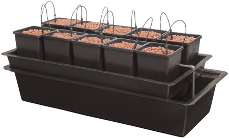 Wilma 10 Pot Complete System