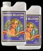 Sensi Bloom Two-Part