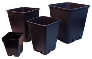 Plug & Grow Square Pots