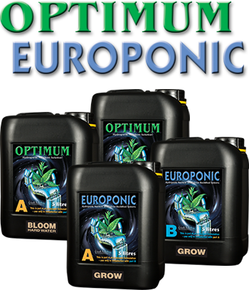 Europonic Bloom A and B