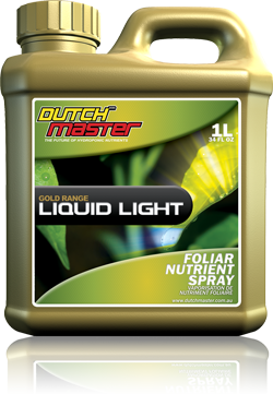 Dutch Master Gold Range Liquid Light