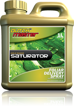 Dutch Master Gold Range Saturator