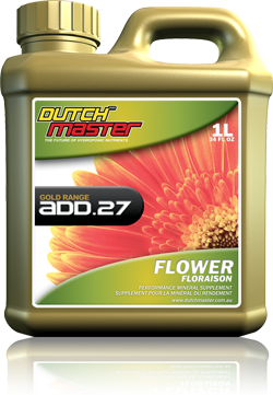 Dutch Master Gold Range ADD.27 Flower