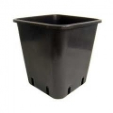 15 cm Tall Square Pot