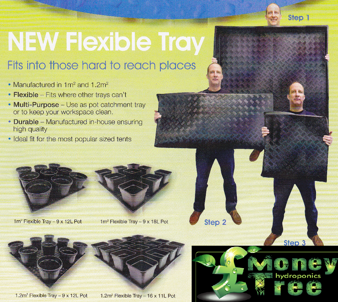 Flexible Tray's